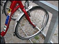 images/stories/20100306_SWR_wywiad/03_640_img_8355_SWR_rower2.jpg