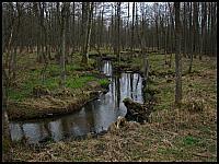 images/stories/20130430_Majowka_Dzien1/640_IMG_9214_Rzeczka_zm.JPG